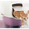 Oprema za mačke