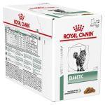 Royal Canin Diabetic Cat 12x85g