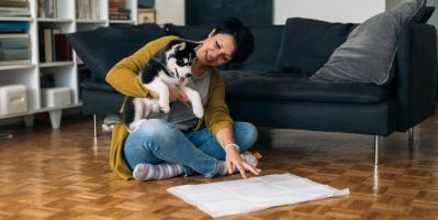 Neophodne i praktične: pelene za pse